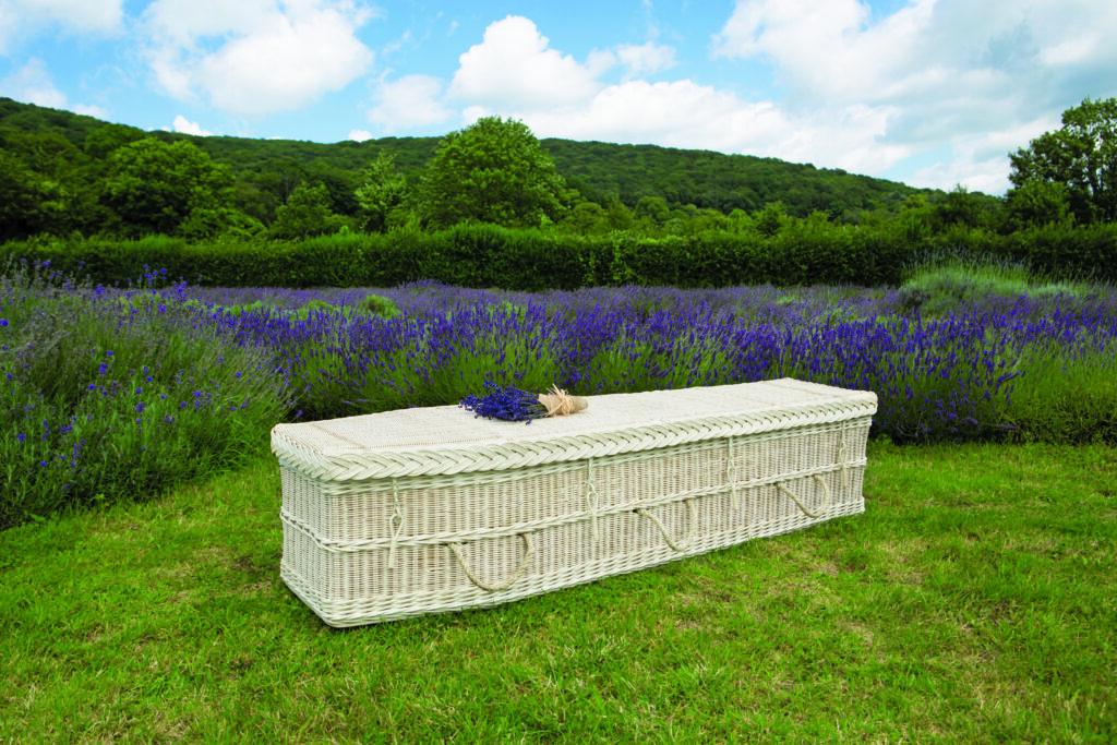 Cane Coffin Location