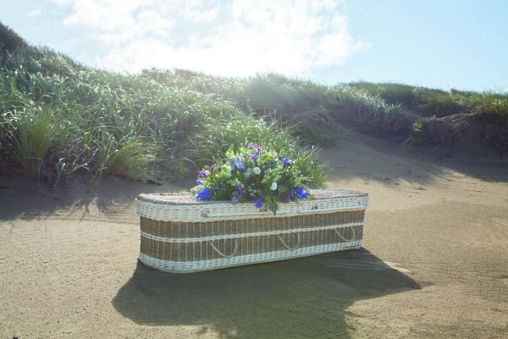 Seagrass Sandy Beach