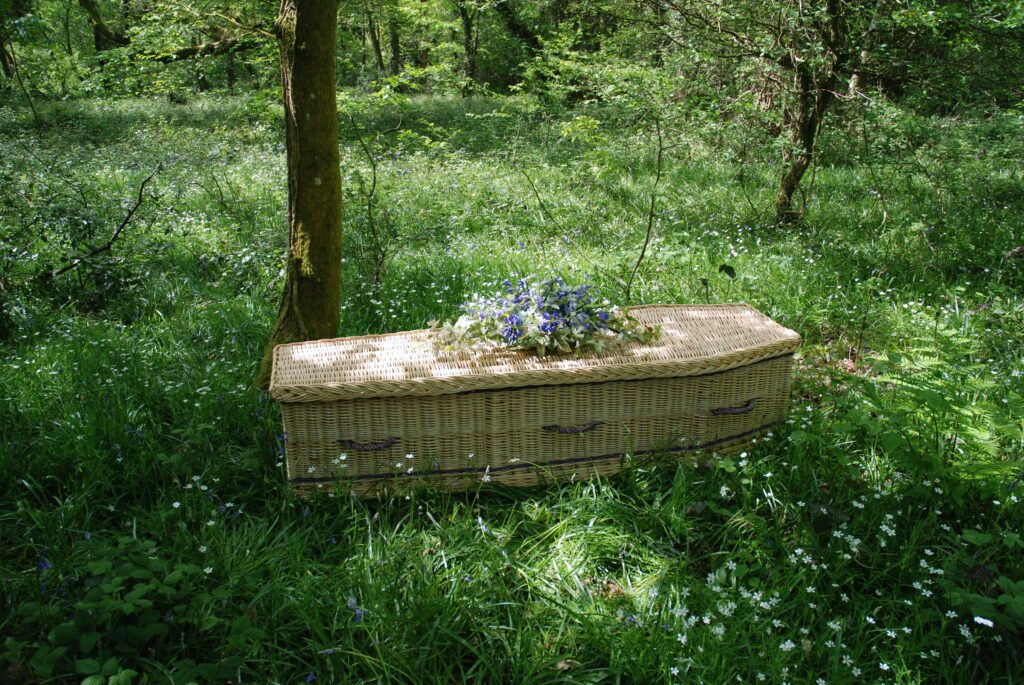 Willow Coffin in woodland