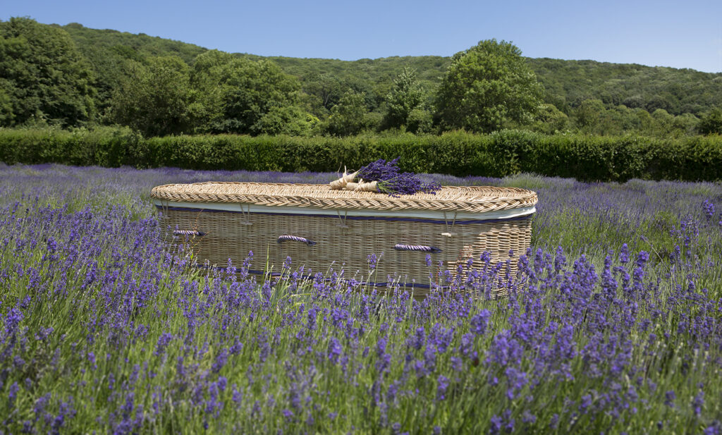 willow-coffin-curved-purple-bands
