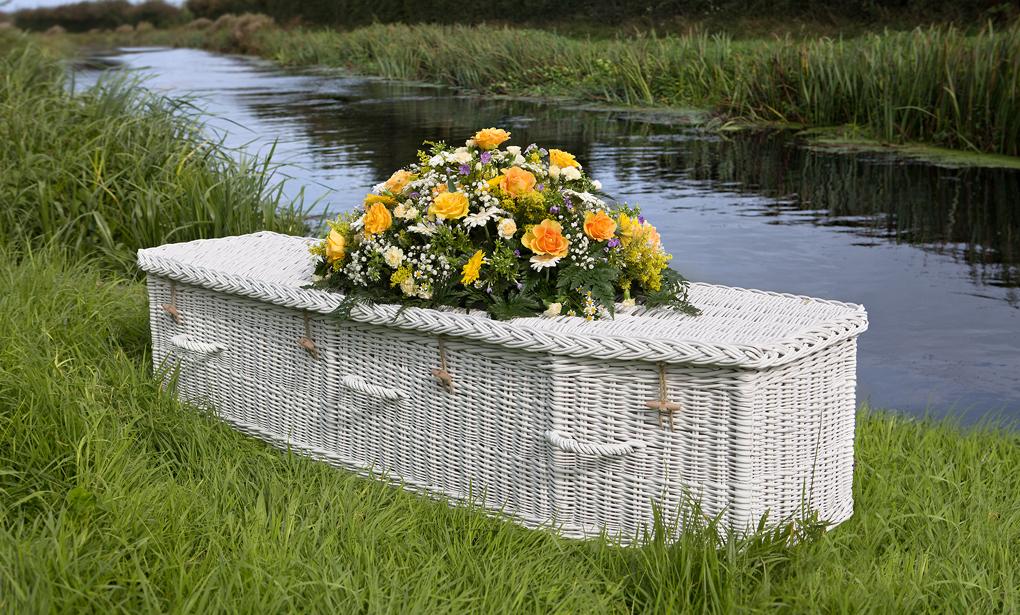 willow-coffin-sprayed-white